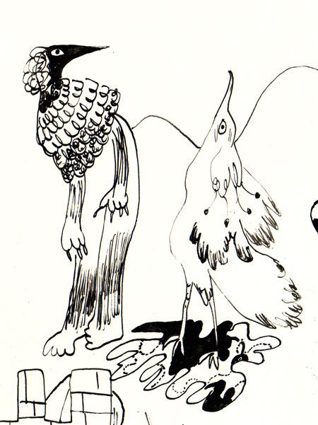 2 wierd bird pals