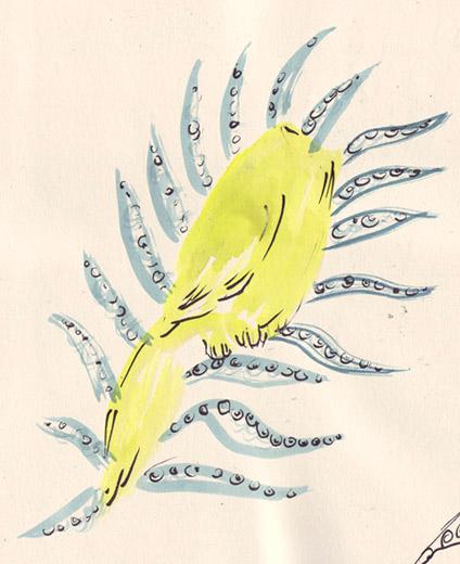 bird n squid mix
