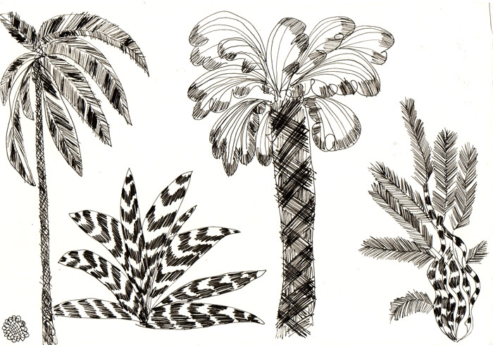 treespalm.jpg